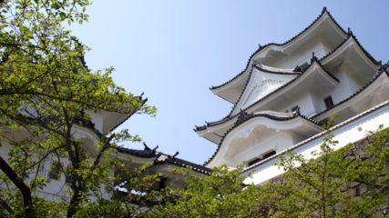歴史ファン必見スポット!『伊賀上野城』の施設情報や見どころ、アクセスをご紹介
