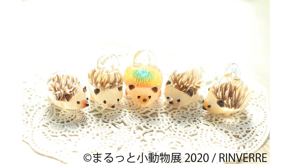 まるっと小動物展 2020 in 名古屋