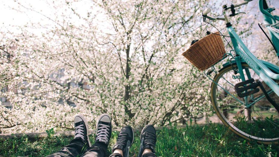 ここでしか味わえない体験を‥☆ 「モクモクで春休みも楽しもう!」