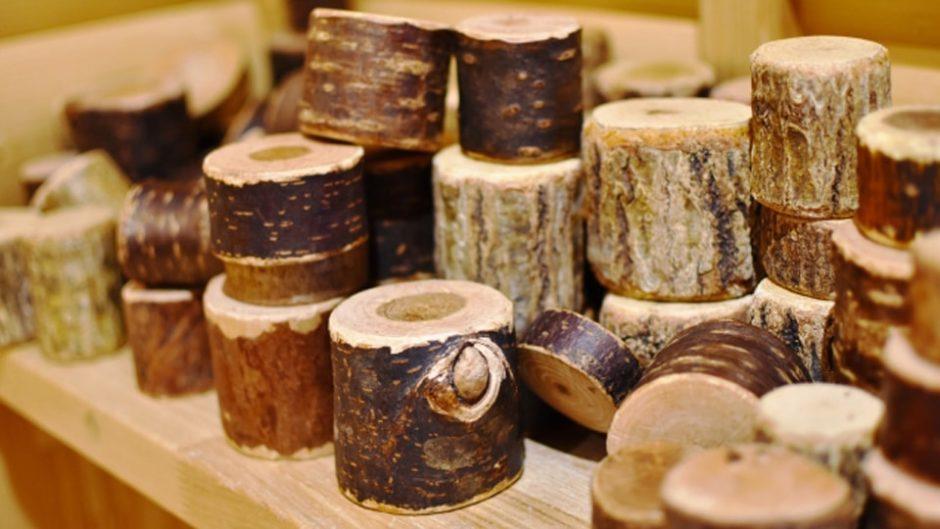 国産木材の遊具や玩具がいっぱい!全天候型屋内施設「森のわくわくの庭」