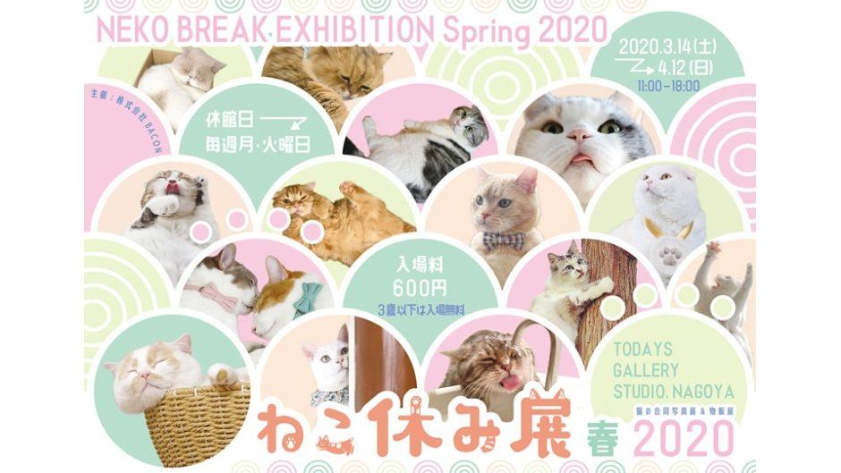 イースター記念企画もあり!「ねこ休み展 春 2020」