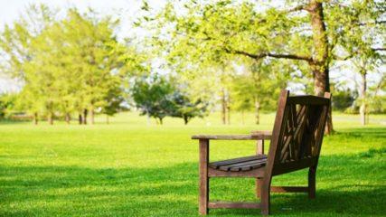 「あいち健康の森公園」で体を動かして健康づくりをしよう!