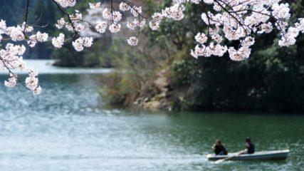 湖畔を散策、おいしい空気に楽しいわかさぎ釣り♪四季を通じて楽しめる、伊自良湖へ行ってみよう!