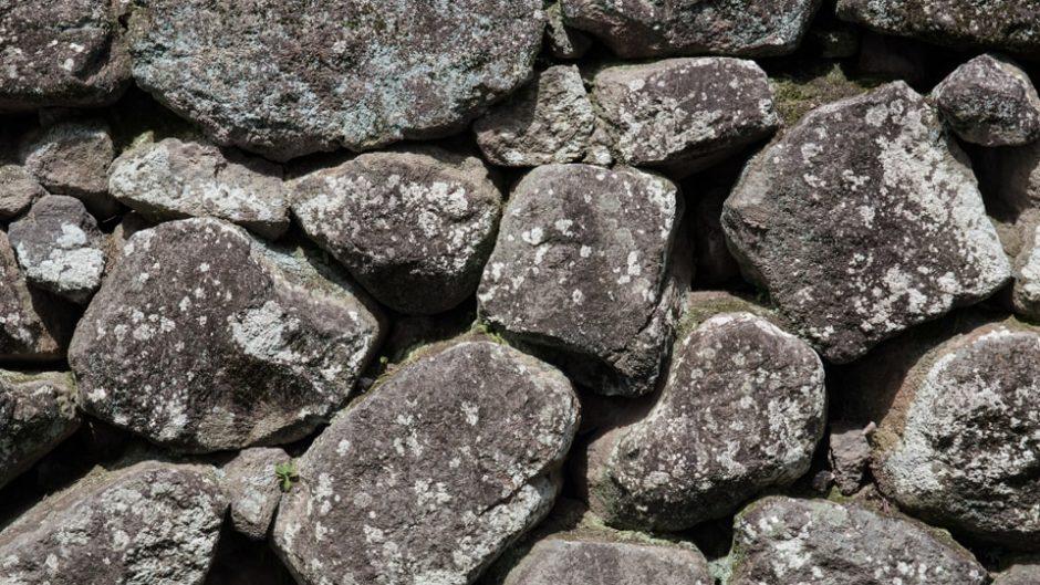 一風変わった石たちと出会える「奇石博物館」をご紹介!