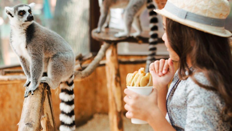 赤ちゃんの動物園デビューにもおすすめ!三重県の『大内山動物園』に遊びに行こう♪