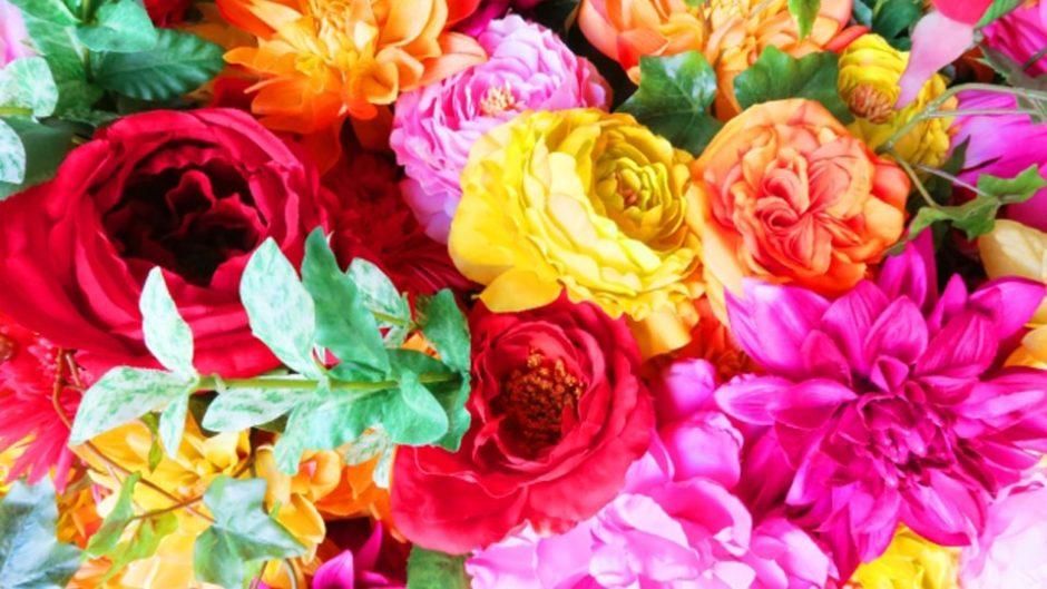 あなたの誕生花は?誕生日の日に是非とも行きたい☆パルケエスパーニャの「パティオ デル カント~ダルシネアの秘密の花園~」