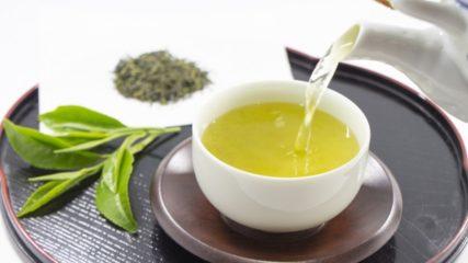 静岡が世界に誇るお茶文化が大集結!「ふじのくに茶の都ミュージアム」