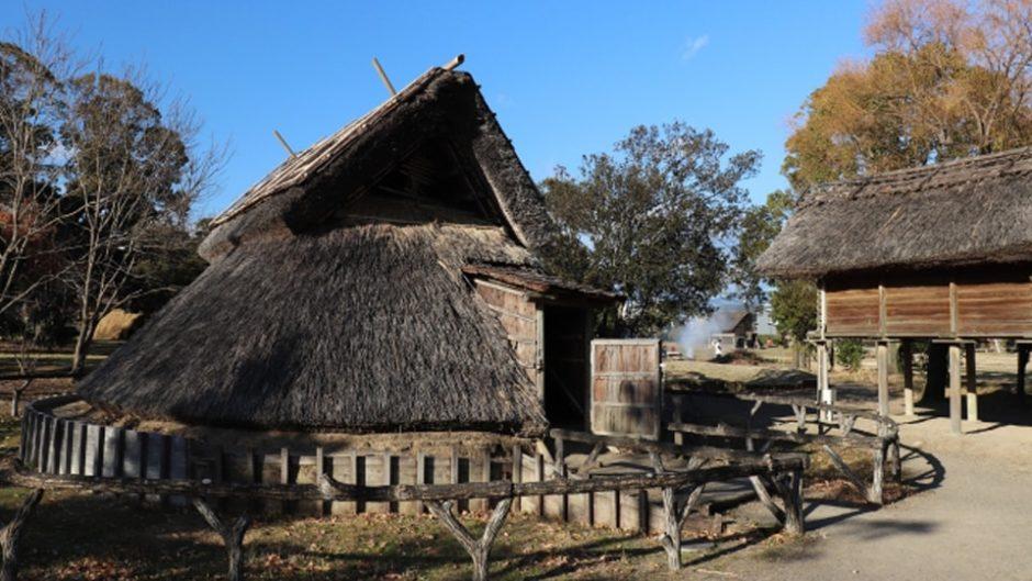 教科書に載っていた「登呂遺跡」はココ!『静岡市立登呂博物館』で弥生時代の人々の暮らしを体感