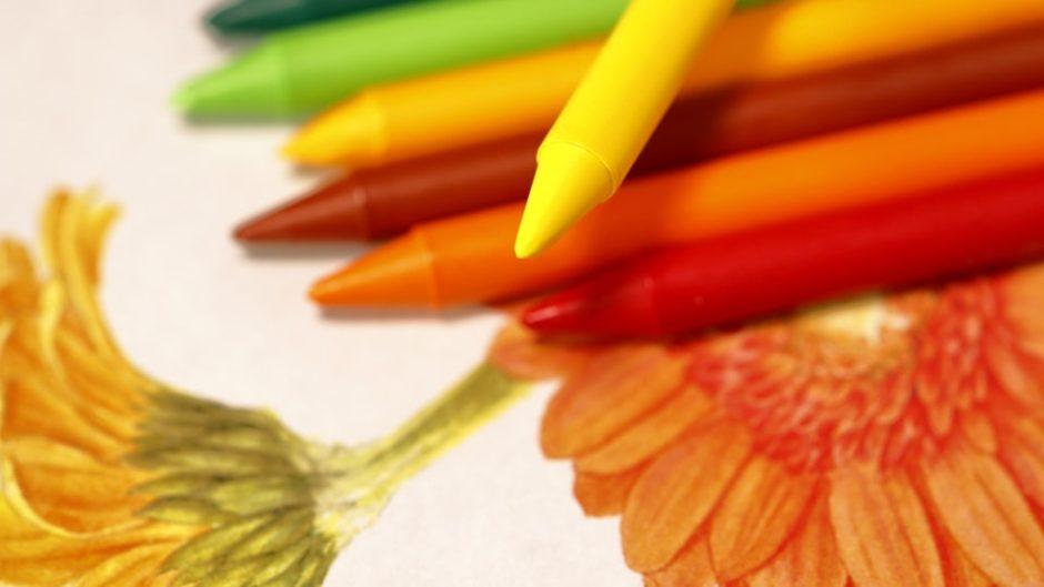 見慣れた植物の新たな魅力を発見!「花の絵美術館」
