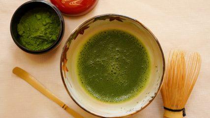 """""""茶の湯文化""""をあらゆる角度から触れることができる施設「茶の湯の森」"""