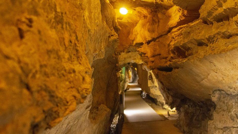 東海エリア最大級の規模を誇る観光鍾乳洞「竜ヶ岩洞」