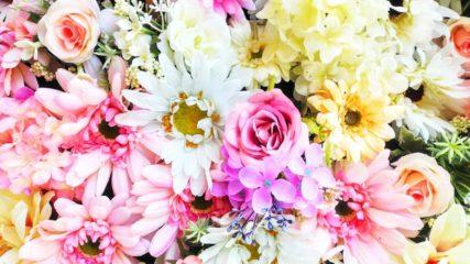 美しい色とりどりの花に囲まれた「はままつフラワーパーク」をご紹介!