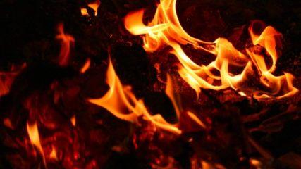 死後の世界を体験!?地獄と極楽のテーマパーク「伊豆極楽苑」