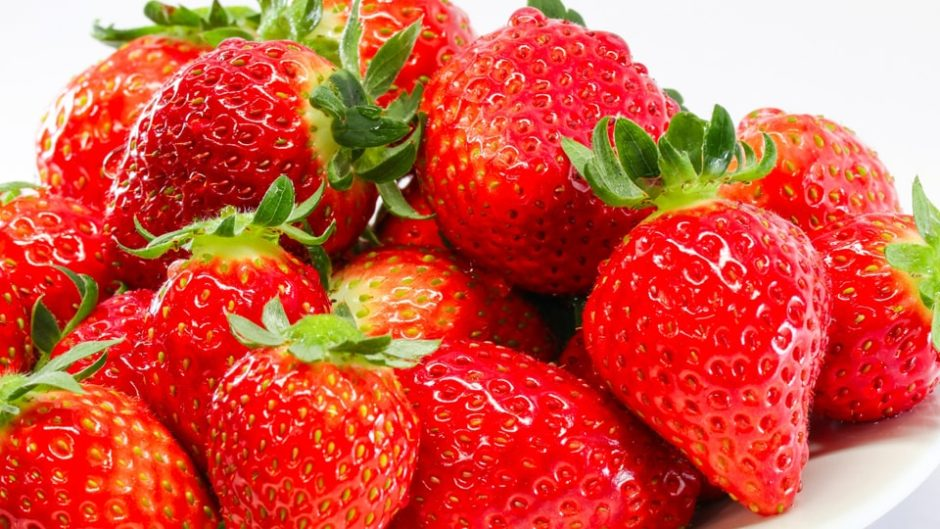 苺の直売といちご狩り!最新技術を使った農園「マリモファーム」