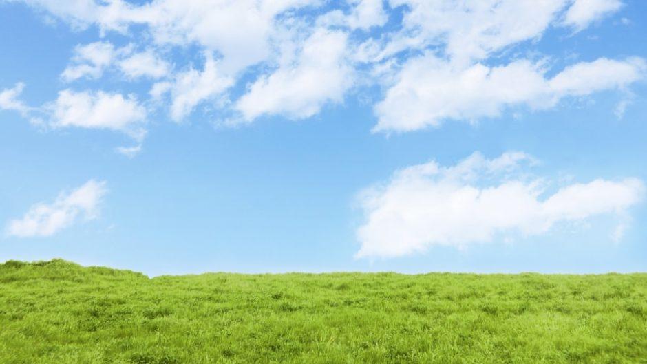 公園で遊び尽くそう♪愛知県「大高緑地」