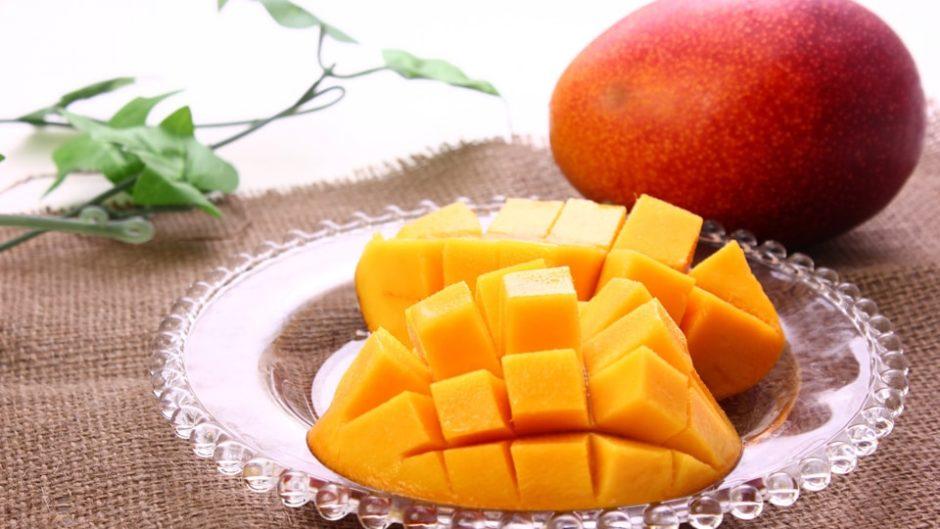マンゴーやライチなど珍しい果物も栽培!大富農園をご紹介!