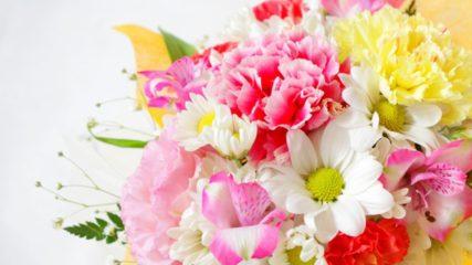 日本一の花のセリ市場が見られる!「愛知豊明花き地方卸売市場」