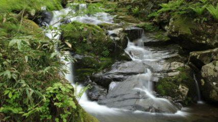 「宇津江四十八滝」迫力満点の滝めぐりへレッツゴー!