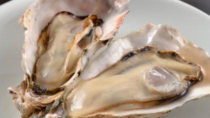 【今切体験の里】冬期の牡蠣小屋が大盛況!魚介類を楽しむスポット!