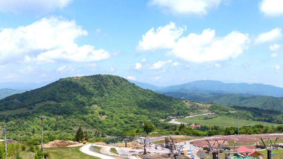 アウトドア、花、スキー!「茶臼山高原」で自然を遊びつくしちゃおう★