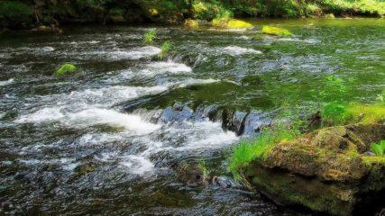 田舎と自然を贅沢満喫!愛知県「とみやまの里」