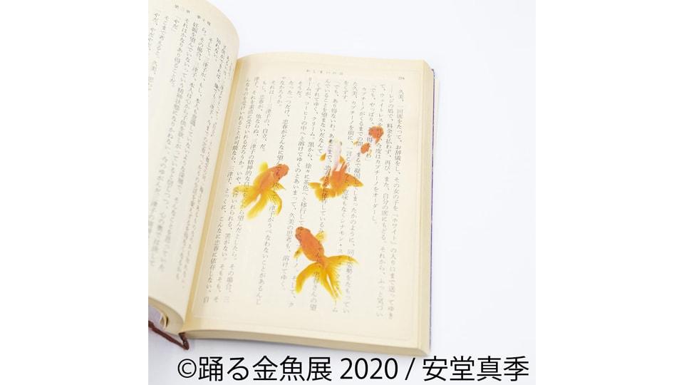 踊る金魚展 2020 in 名古屋