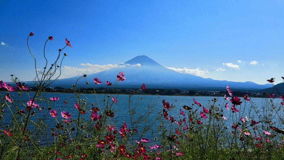 富士山が覗く絶景の釣り場「東山湖フィッシングエリア」