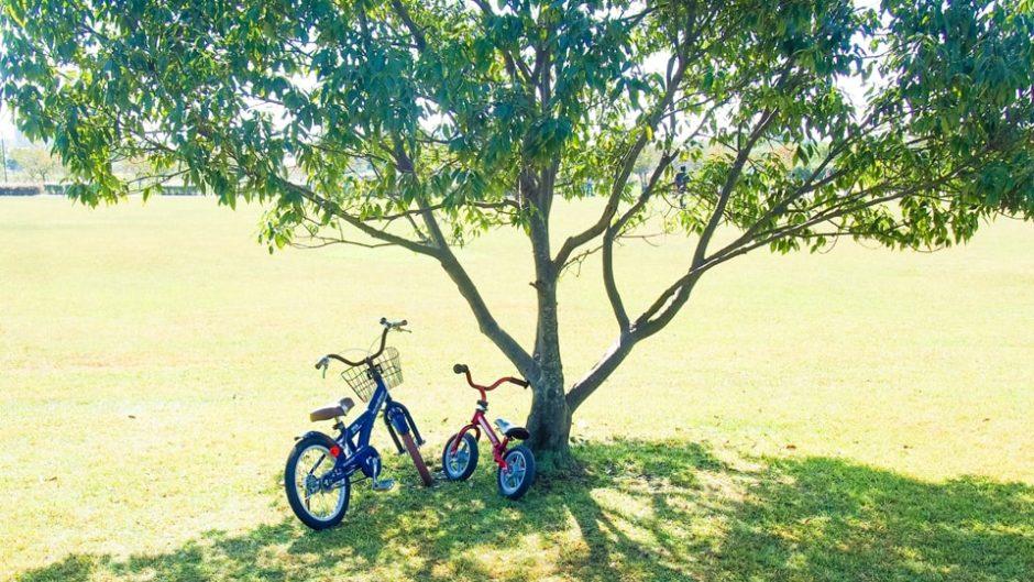 「石人の星公園」で自然と自転車を楽しもう★