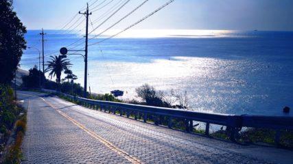 道の駅「伊良湖クリスタルポルト」で旅の途中のひとやすみを…♪