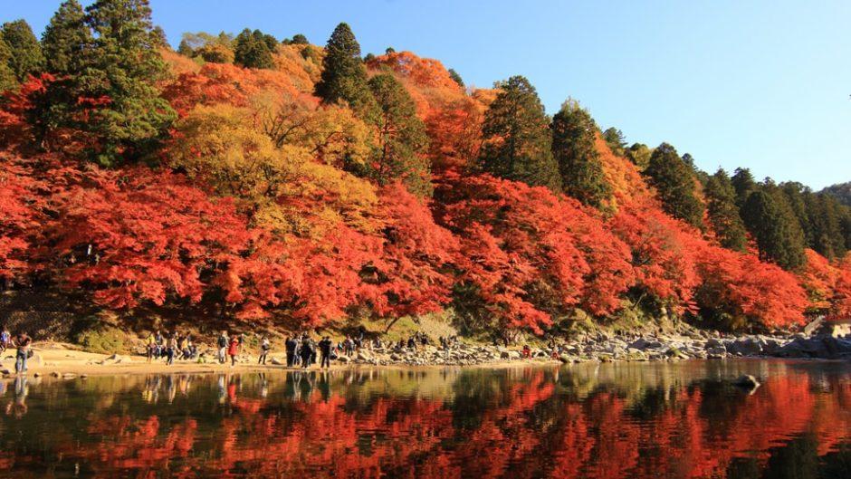 四季を通じて美しい香嵐渓へ、こころの休息においでん♪