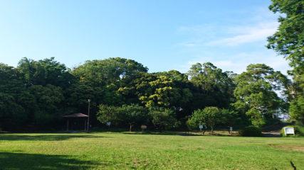 清須の自然とふれ合おう!「はるひ夢の森公園」でリフレッシュ!