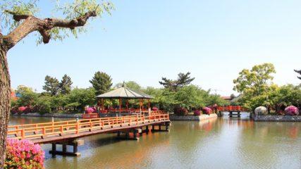 季節の花々が彩る♪三重県「九華(きゅうか)公園」