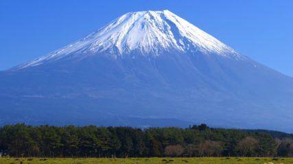 富士山と一緒に遊んで・泊まって・お腹いっぱい♪「朝霧高原もちや」