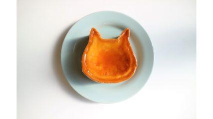ねこねこチーズケーキが名古屋の「アスナル金山」にオープン!