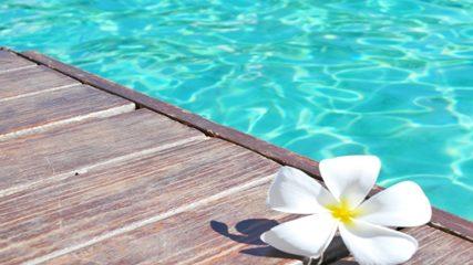 東海市のしあわせ村で遊ぼう!温浴やプール、レストランなどの施設情報をご紹介