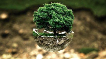 【エコパルなごや】楽しく自然環境のお勉強!