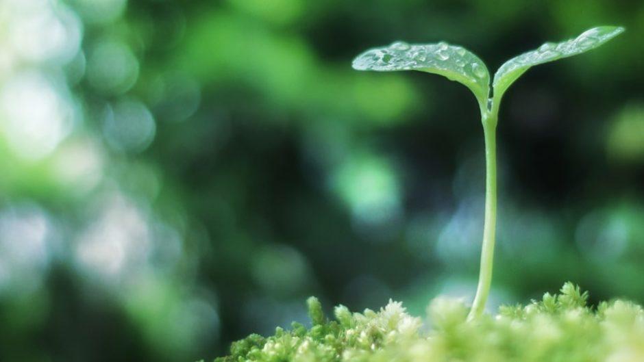 「えこはま」を利用して地球にやさしい生活を始めよう!