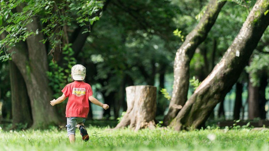 【安城・堀内公園】子どもたちも大満足!花*みどり*メルヘンのテーマパーク