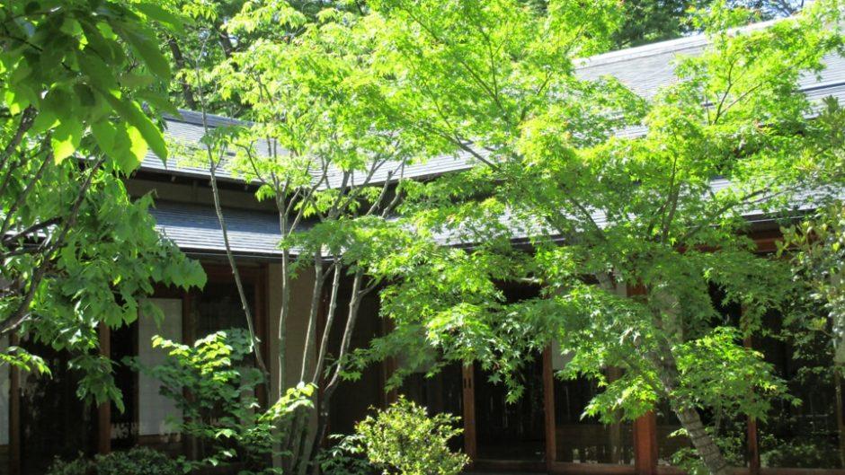 和歌に登場するような情景が広がる「古今伝授の里フィールドミュージアム」