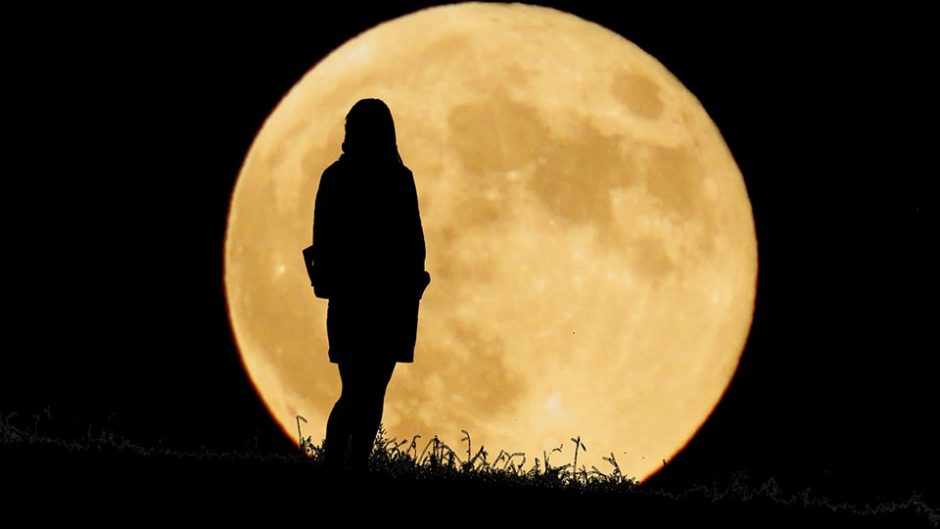 ここから眺める月は最高!海津市にある自然公園「月見の森」