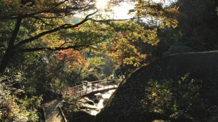 神秘的な岩や自然がもたらすパワースポット「鬼岩公園」
