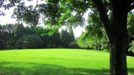 さまざまな角度から伊豆の魅力に触れられる施設「昭和の森会館」