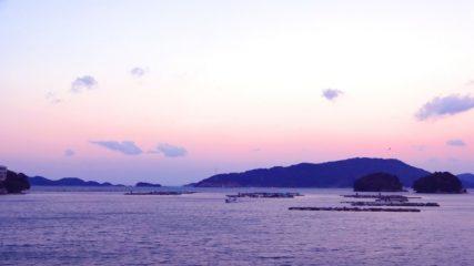 「浮島自然水族館」無人島でいろいろな生き物たちを観察!