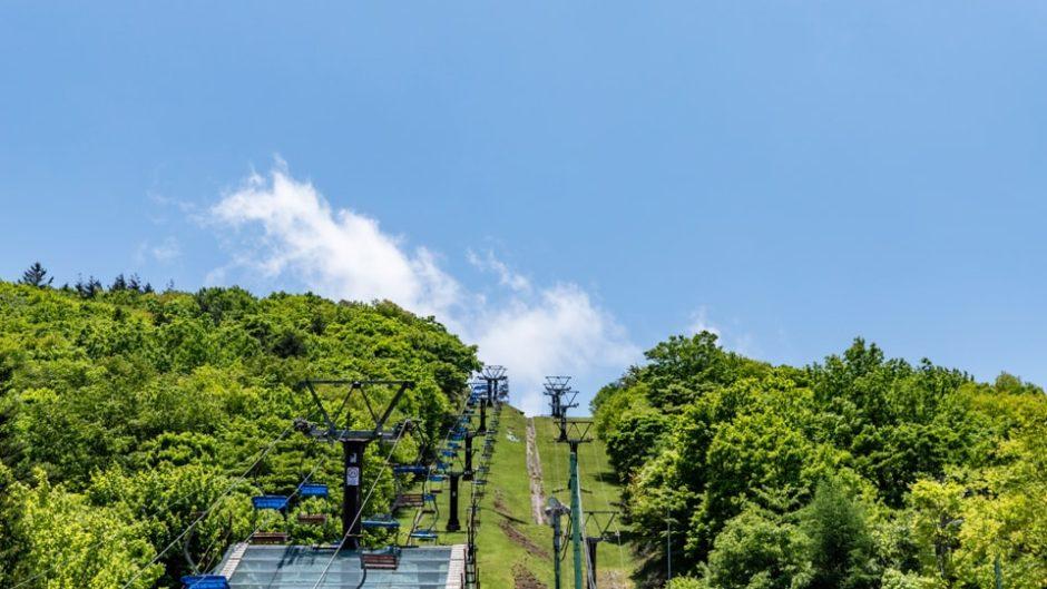 夏の茶臼山高原で遊ぼう!自然体験ができる夏の特別なイベントが開催