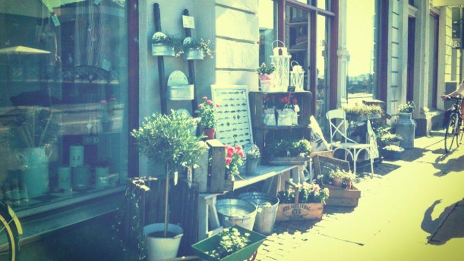 第2土曜日のお楽しみ♪岡崎トレッドゴードマーケットで北欧の雰囲気を楽しもう♪