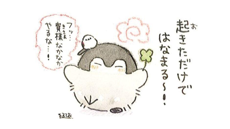 「もっと!コウペンちゃんといつもいっしょな原画展」松坂屋静岡店で開催♡
