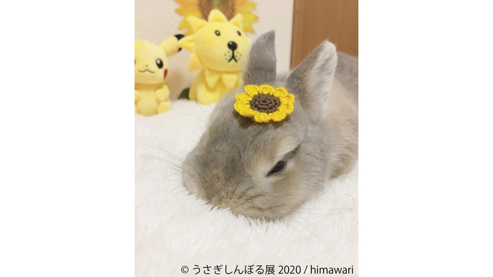 うさぎしんぼる展2020 in 名古屋