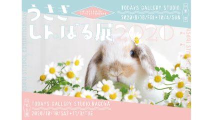 モフモフ可愛すぎる!『うさぎしんぼる展2020』が名古屋市で開催