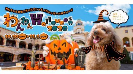 「わんわん Halloween 2020」で愛犬と一緒にハロウィンを楽しもう♪