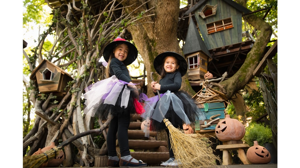魔女の住む森のハロウィン